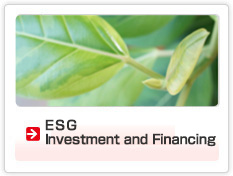 ESG Investment and Financing